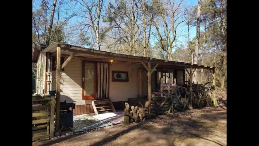 Rustig gelegen boshuisje - Doorn - Vacation home