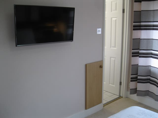 Smart TV with Freeview and NETFLIX