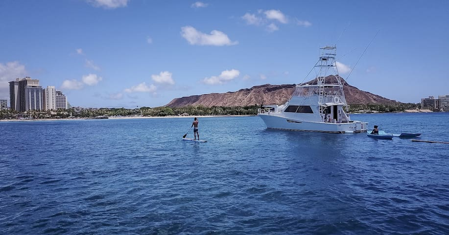 Cruising to Waikiki available at additional cost