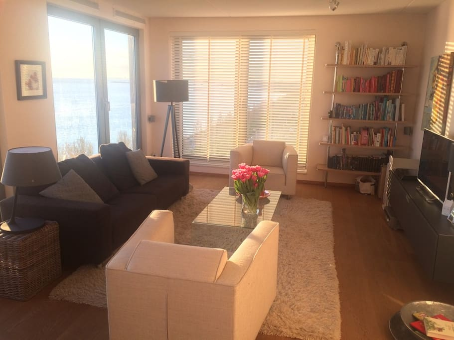 Waterfront penthouse appartamenti in affitto a amsterdam for Appartamenti amsterdam affitto mensile