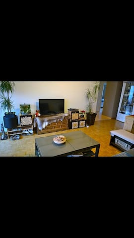 Furnished flat close to the airport Zurich - Kloten - Wohnung