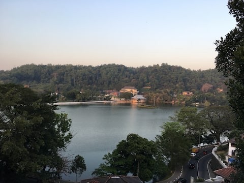 The View from the Balcony onto the Lake