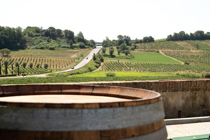 Monna Caterina Wine Resort Deluxe