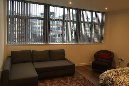 High-spec studio flat: 20 mins to central London - Harrow