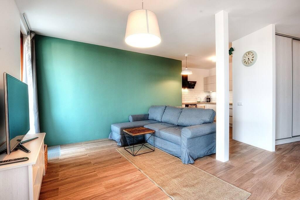 living room, tv, sofa,