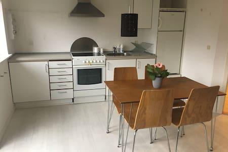 Fuld funktionel lejlighed - 4200 - Apartmen