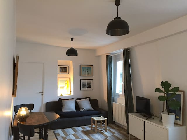 Fully furnished flat near Notre Dame