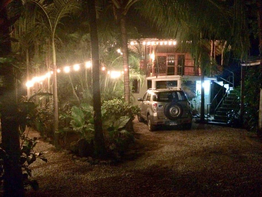 Driveway & entry path through garden at night