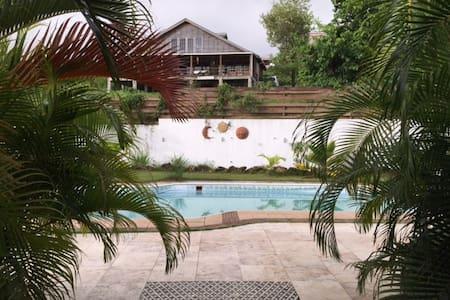 Buckley's Palm Breeze - Swetes - Casa