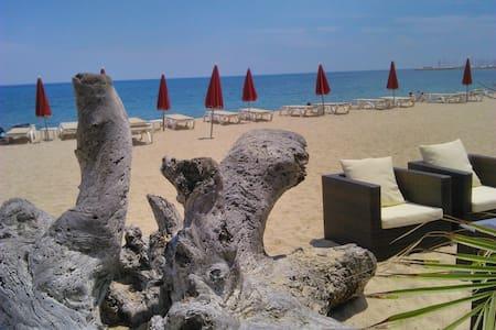 Maison de village à 10min de la mer - Sari Solenzara