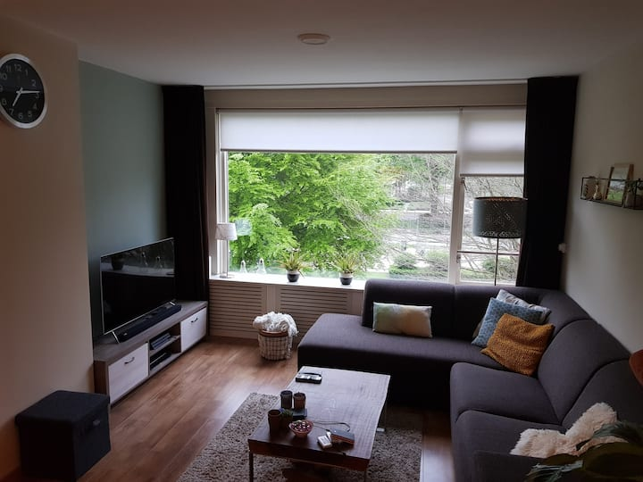 Centrally located appartment near University