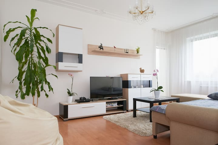 Room near the lake - Vilnius - Flat
