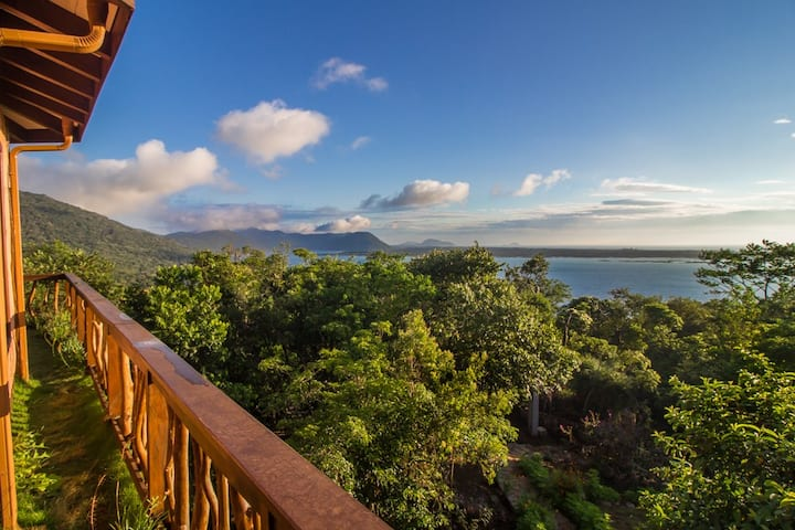 Vista Exuberante na Costa da Lagoa Florianópolis