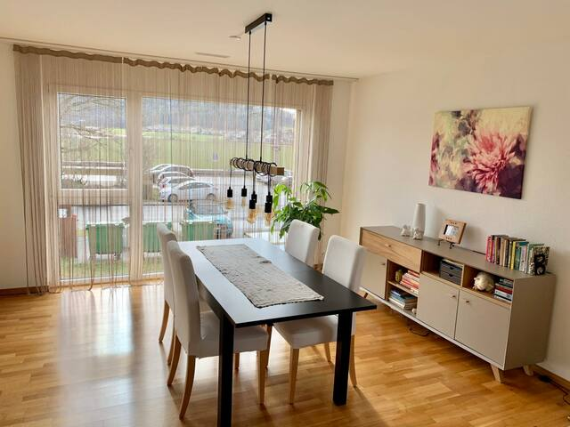Stunning apartment close to Zurich and Baden