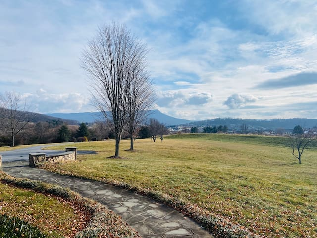 Luxury Manor Home on six acres, 3 miles from JMU!