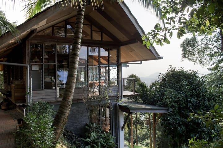 Durian Runtuh @Awanmulan - the garden cabin