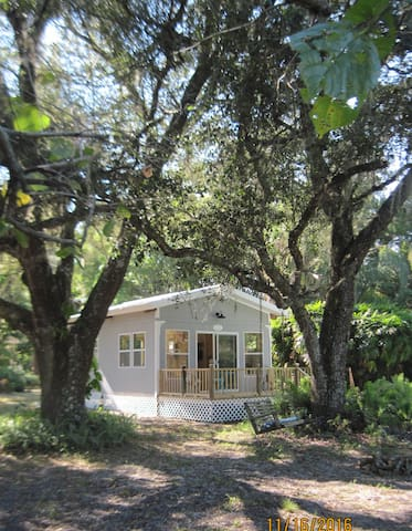 cottage is surrounded by giant Oak trees