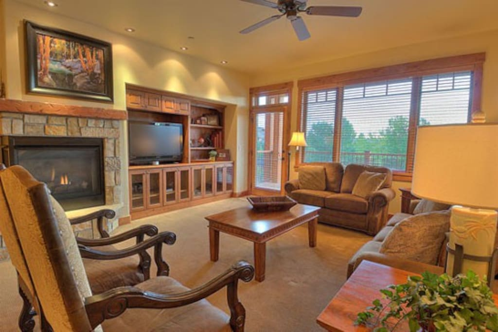 Living area with fireplace, sleeper sofa, tv, dvd, stereo