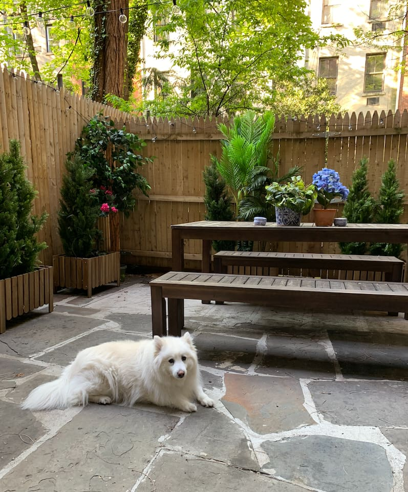 Dog will not be onsite - just using her to model the outdoor space!