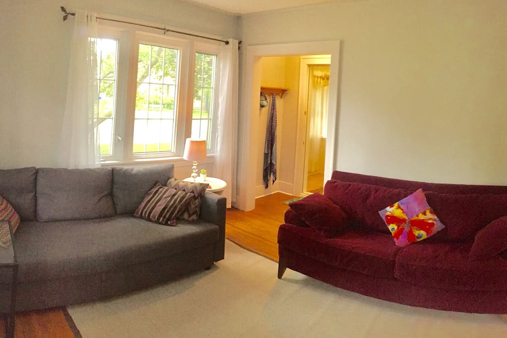 Living room with new pullout couch