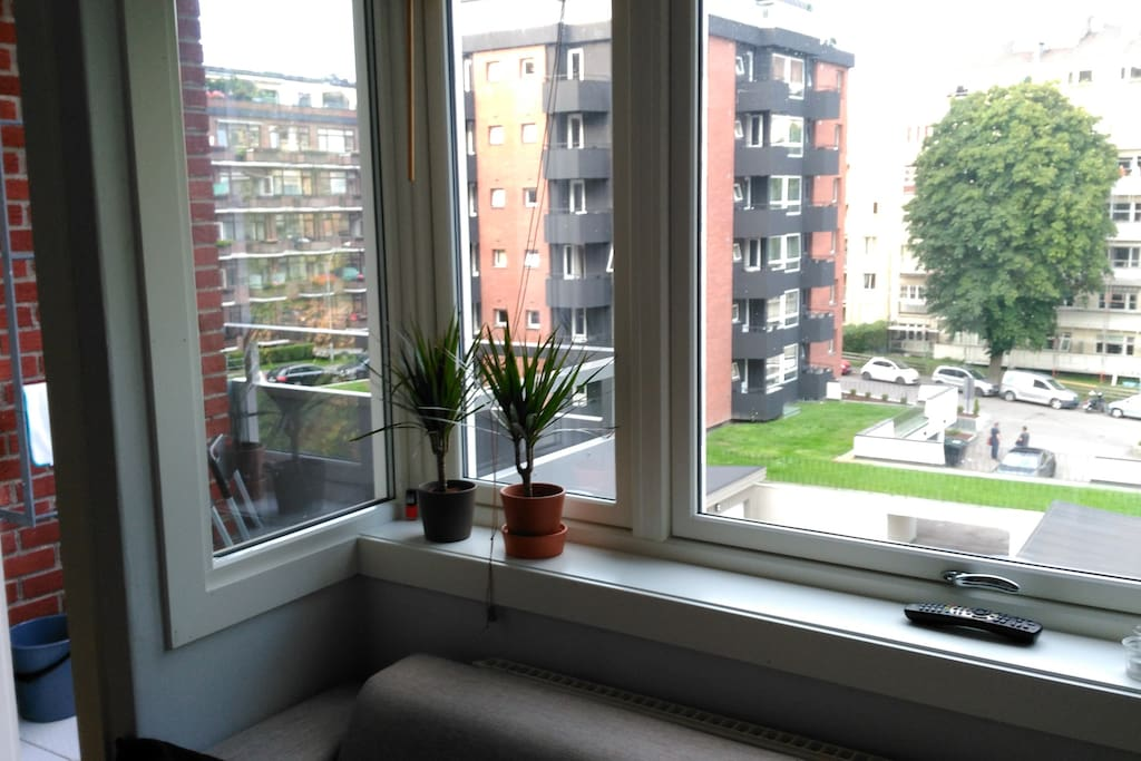 The view, with balcony
