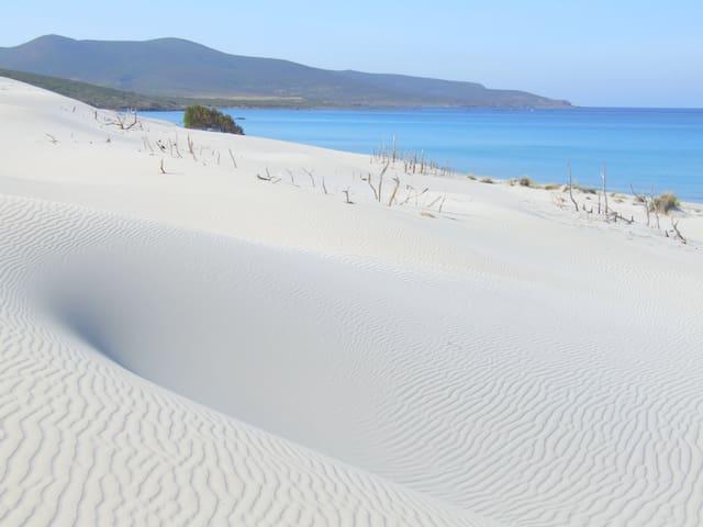 Casa Vacanza nell'Isola Sarda - Sant'Anna arresi - Pis