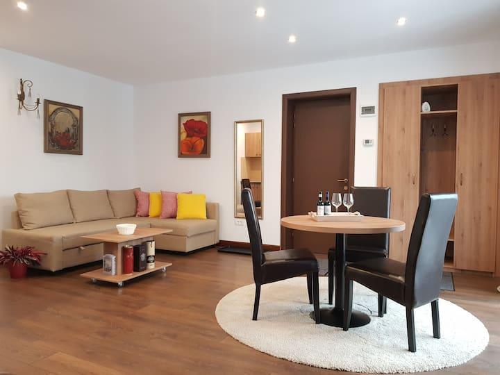 Alfinio Villa Studio, montain view and terrace