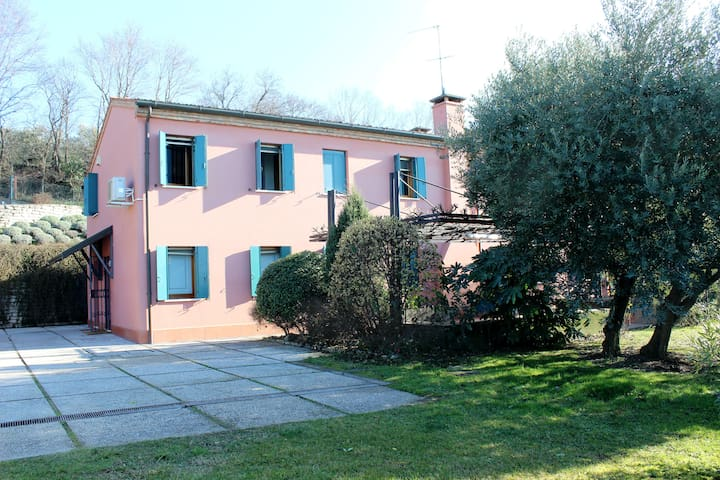 Nice villa with private garden and pool with sauna - Baone - Villa