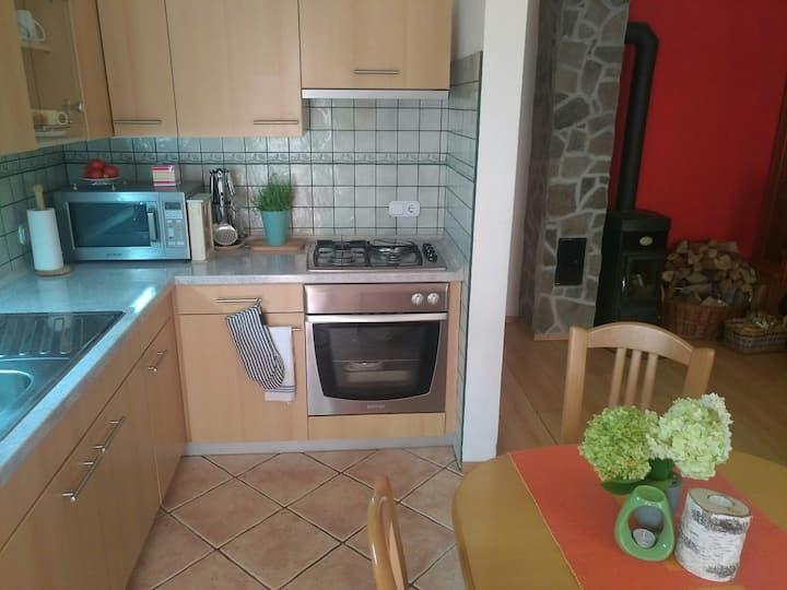Second Home apartment Bohinjska Bistrica
