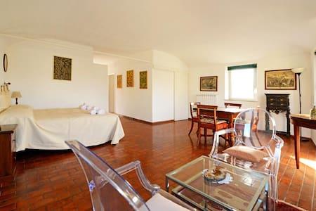 Trilussa terrace penthouse: 2+2 ppl - Roma - Apartment