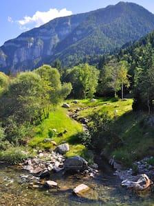 Svegliarsi col brusio di un ruscello di montagna - Canal San Bovo - Lain-lain