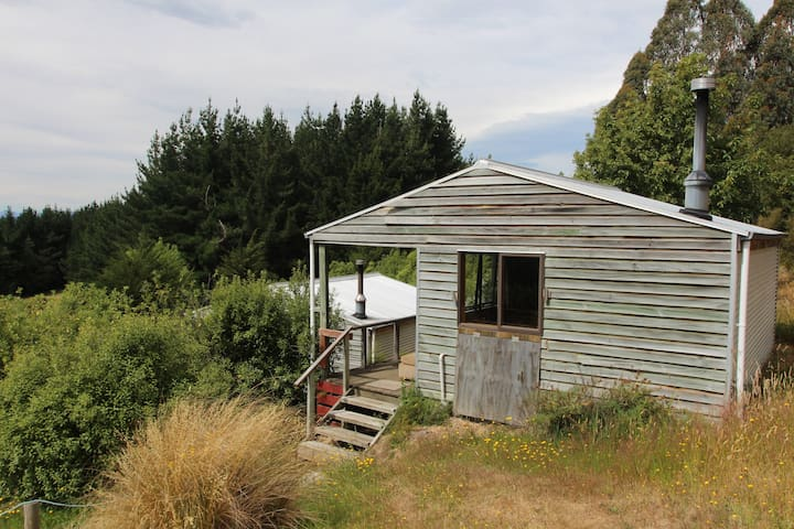 Freestone Cabin - Manapouri