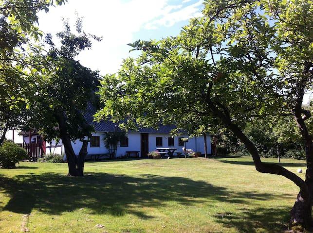 Charmerende feriehus på Langeland - Humble - House