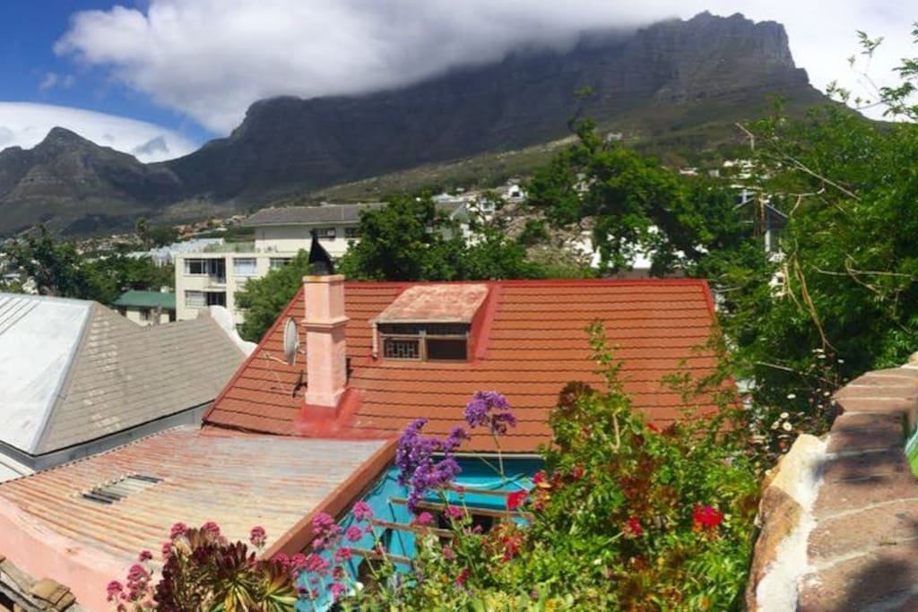 View of table mountain from the Pool