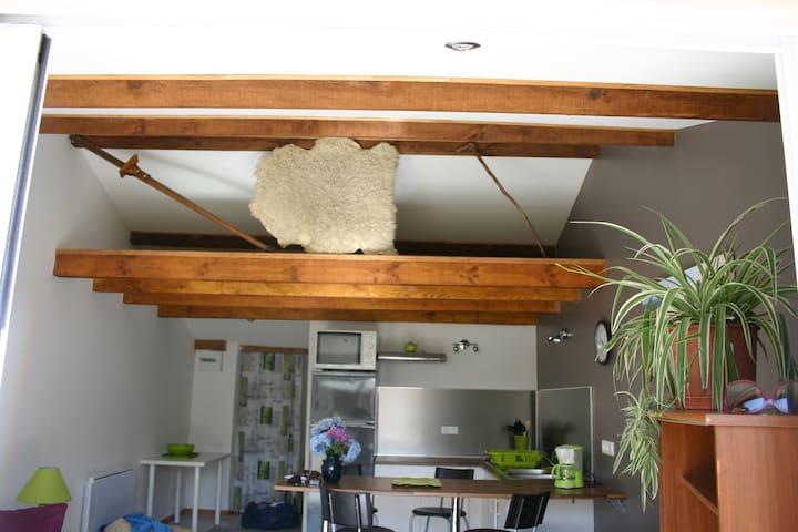 Studio proche océan et lacs - Biscarrosse - Apartamento