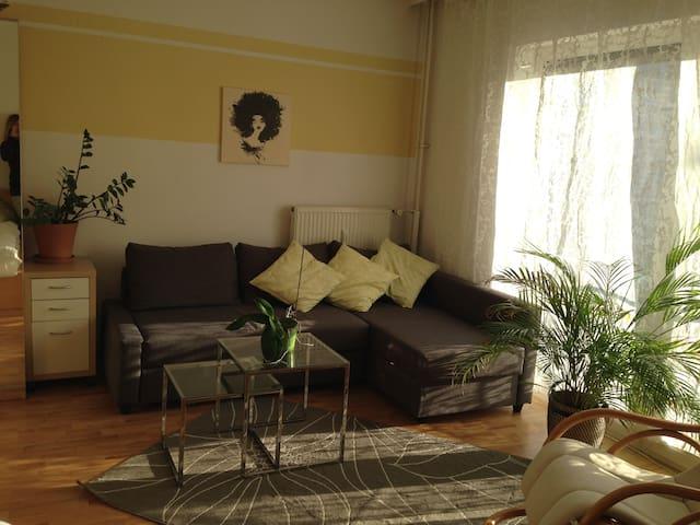 helle 1-ZKBB mit Wohnküche in bester Lage - Mannheim