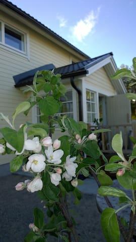 Talon sisäänkäynti on yhteinen vieraiden kanssa.