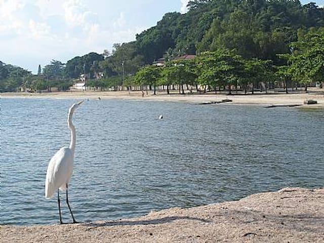 Casa na praia de Paquetá