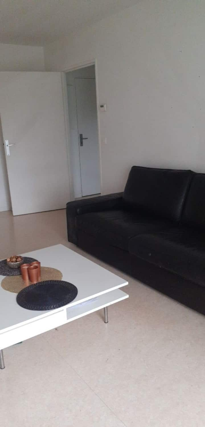 Grand appartement proche La defense - Paris (92)