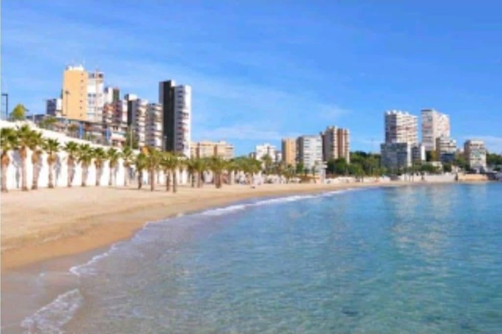 Playa Albufereta