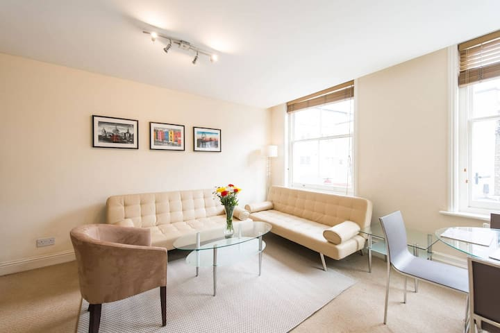 1BD Flat Prime location Victoria near Big Ben