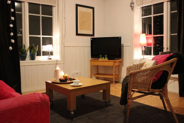 Comfy apartment in villa town centre - Kongsberg - Apartamento
