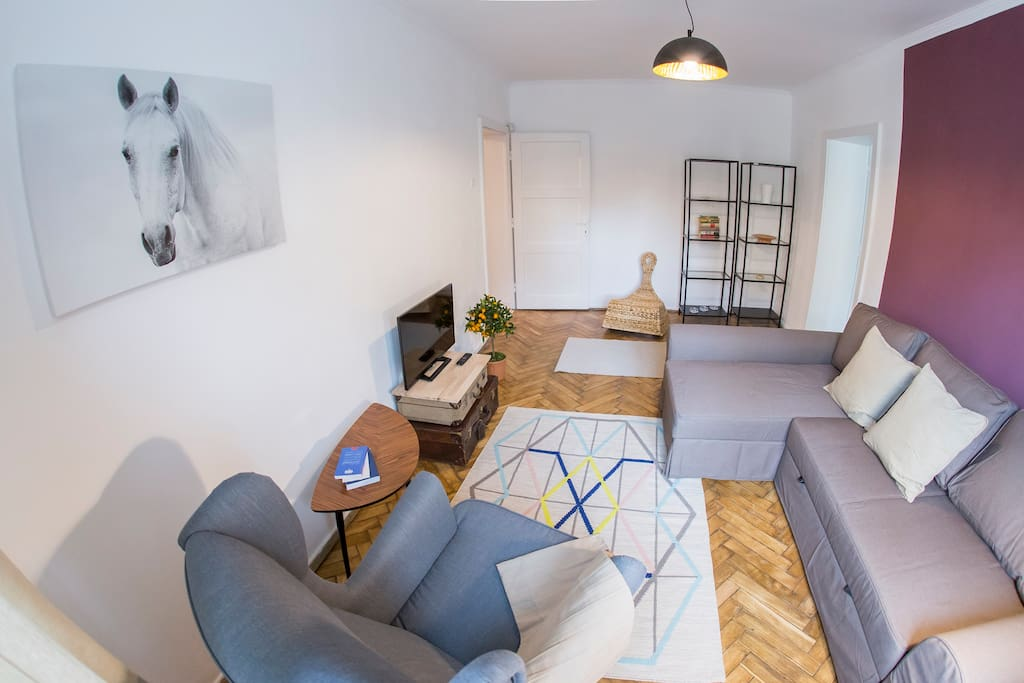 Livingroom/extensible sofa/seating area/flat TV/street view/book shelf