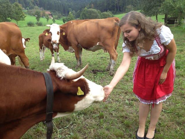 Bauernhof im Schwarzwald - Zell am Harmersbach