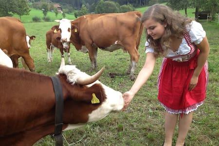 Bauernhof im Schwarzwald - Zell am Harmersbach - Appartement