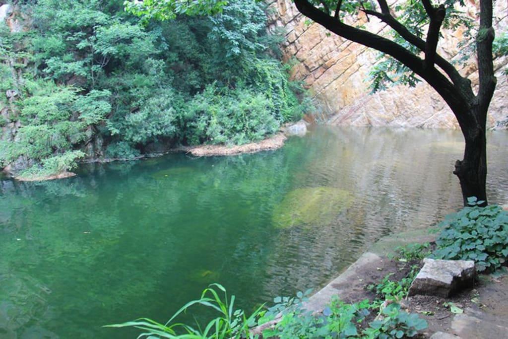 梨木台溪水
