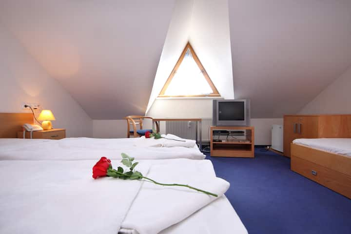Double or Twin Room with Breakfast in Centre