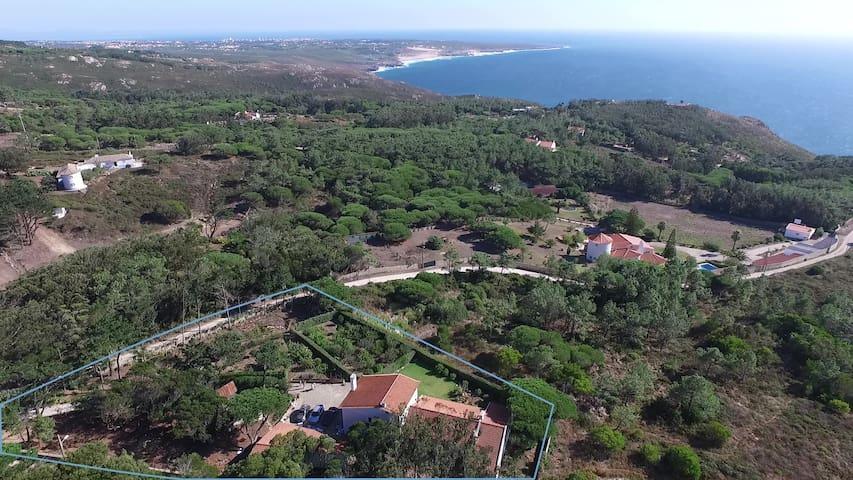 Sea view Villa in 3 800 m2 property