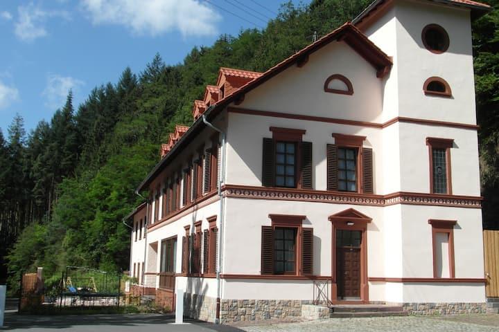 Maison de vacances de luxe à Rohl Eifel avec jardin clôturé