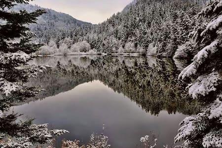 Très calme, ski, randonnnée. - Lautenbach
